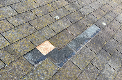 Asphalt Shingle Repair